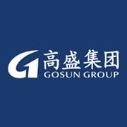 东莞市高盛集团有限公司