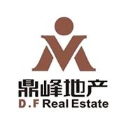 广东鼎峰地产集团有限公司