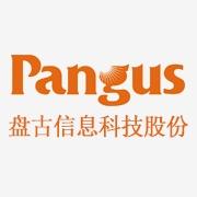 广东盘古信息科技股份有限公司