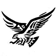 东莞市鸿鹰电子有限公司
