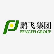深圳市瑞鹏飞模具有限公司