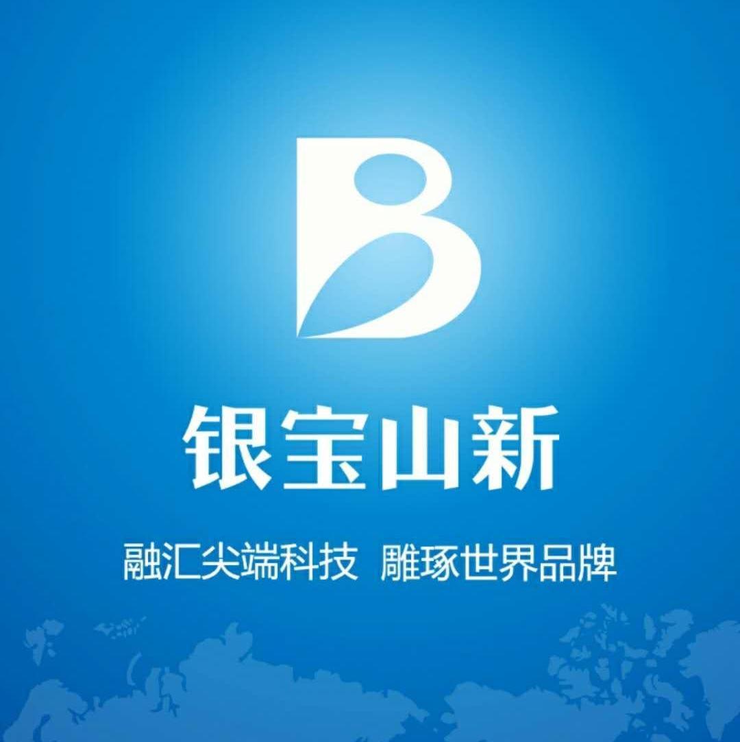 惠州市銀寶山新實業有限公司