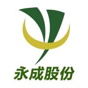 深圳市永成光电子股份有限公司
