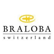 瑞士寶皮革制品(惠州)有限公司