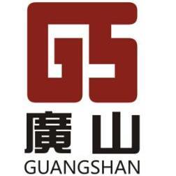 广东广山新材料股份有限公司