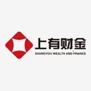 江苏上有信息技术服务有限公司东莞分公司