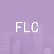 惠州飞线科技有限公司