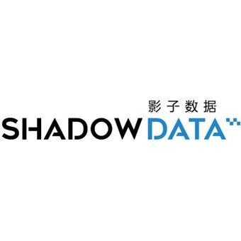 广东影子数据信息科技股份有限公司
