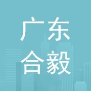 广东合毅建设工程服务有限公司