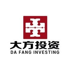 广东大方投资有限公司