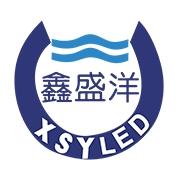 深圳市鑫盛洋光电科技有限公司