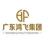 广东鸿飞数据服务有限公司