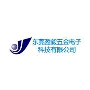 惠州市盈毅电机有限公司