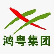 东莞鸿粤锐虎汽车销售服务有限公司