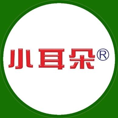 小耳朵(广东)电子科技股份有限公司