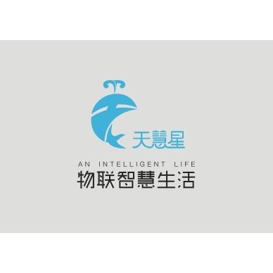 深圳市天慧星信息技术有限公司