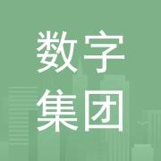 东莞市数字经济发展集团有限公司